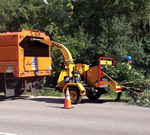 Commercial Tree Services-North Miami FL Tree Trimming and Stump Grinding Services-We Offer Tree Trimming Services, Tree Removal, Tree Pruning, Tree Cutting, Residential and Commercial Tree Trimming Services, Storm Damage, Emergency Tree Removal, Land Clearing, Tree Companies, Tree Care Service, Stump Grinding, and we're the Best Tree Trimming Company Near You Guaranteed!
