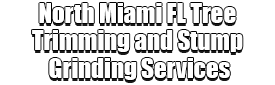 North Miami FL Tree Trimming and Stump Grinding Services Logo-We Offer Tree Trimming Services, Tree Removal, Tree Pruning, Tree Cutting, Residential and Commercial Tree Trimming Services, Storm Damage, Emergency Tree Removal, Land Clearing, Tree Companies, Tree Care Service, Stump Grinding, and we're the Best Tree Trimming Company Near You Guaranteed!